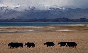 Kara Kul Tó Lake Kara Kul