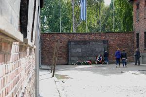 A kivégzőfal / The death wall