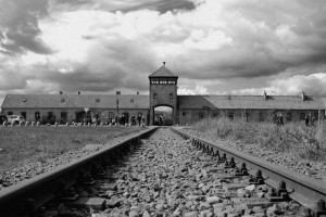 A sinek, amelyeken a rabokat Birkenauba szállították / The train tracks, on which the prisoners were transported to Birkenau